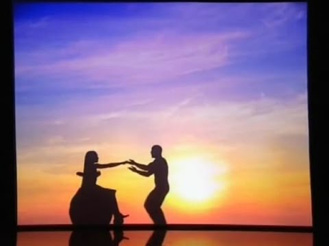 Attraction Shadow Theatre Group (Royal Variety Performance 2013)