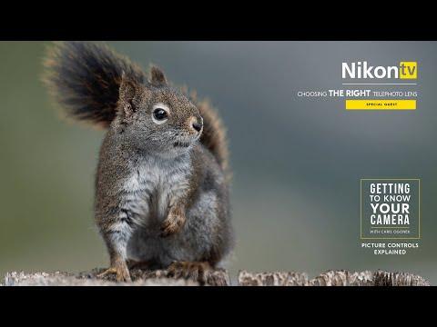 nikontv---choosing-the-right-telephoto-lens