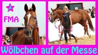 Wölbchen ohne Sattel reiten I FMA Reitsportmesse RheinMain I Ein ganzer Messetag