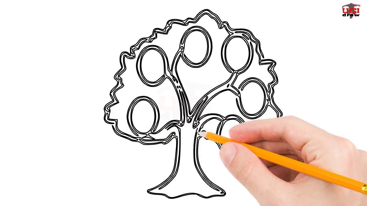 how to draw a family tree step by step easy for beginners kids