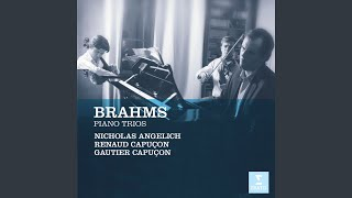 Piano Trio No. 1 in B Major, Op. 8: II. Scherzo (Allegro molto)