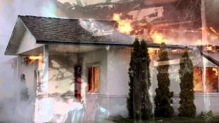 If A Tree Falls: A Story of the Earth Liberation Front Official Theatrical Trailer (HD)