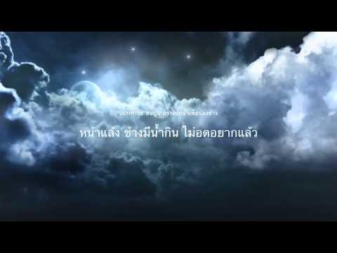 Ok nation.net โครงการเข้าใจช้าง เข้าใจบ่อ