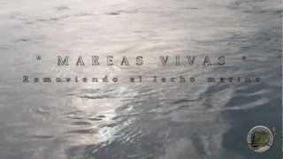 pesca dorada ZONA DE DORADAS XXL fishing peche..wmv