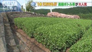 """1本20万円!""""超高級日本茶""""人気のヒミツ2(13/08/01)"""
