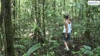 La Guyane, une destination à vivre