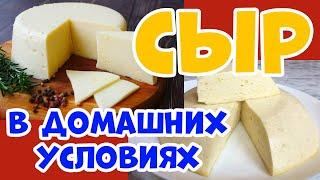 Домашний сыр Простой рецепт как сделать сыр дома в домашних условиях Теперь готовлю только так