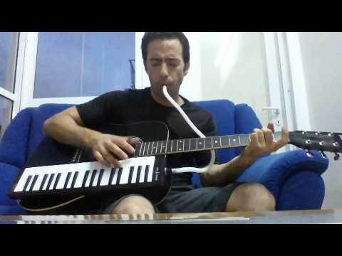 Simon & Garfunkel - Sound of Silence melodica & guitar cover