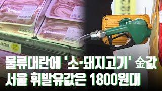 물류대란에 '소·돼지고기' 금값…서울 휘발유값은 180…