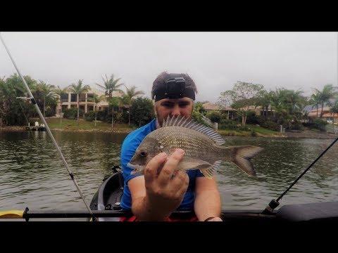 Lake Orr - The Fish Next Door