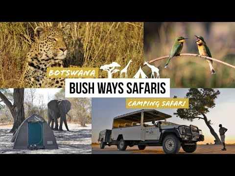 Botswana Camping Safari: Chobe | Moremi | Khwai | Highlights Bush Ways Safaris