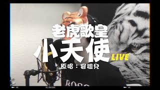 老虎歌皇《小天使》Live Cover