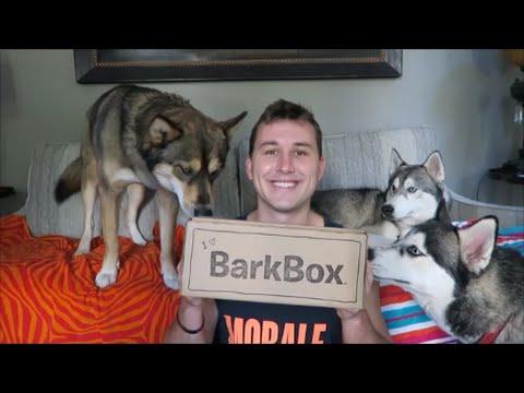 BARKBOX Unboxing   September 2016