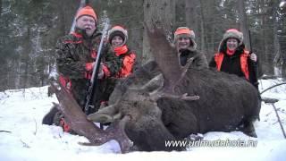 Видеоотзыв на охоту на лося загоном 2014 Elchjagd Russland elk hunt Russia