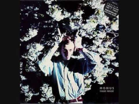 Momus - The Homosexual