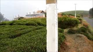 tamilnadu real estate - buy property in ooty - 7708504420