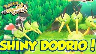 SHINY DODRIO REACTION! RIDEABLE SHINY POKEMON! - Pokémon: Let