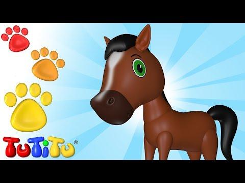 TuTiTu Zwierzęta w języku po polsku   Koń   I inne Zwierzęta