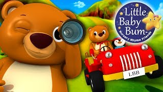 The Bear Went Over The Mountain | Nursery Rhyme | by LittleBabyBum HD Version