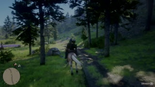 Red Dead Redemption  2 - 18