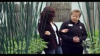 Explore The Oak Park Conservatory