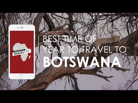 What is the best time of year to travel to Botswana? Rhino Africa's Travel Tips