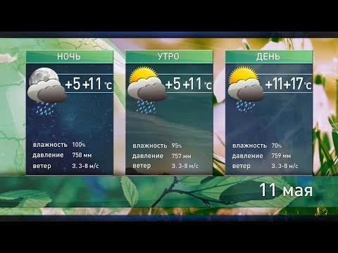 Прогноз погоды на 11 мая: дождей станет меньше и потеплеет