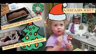 Домашний влог выпечка из полуфабрикатов Александра в разных ипостасях день 1 января салют