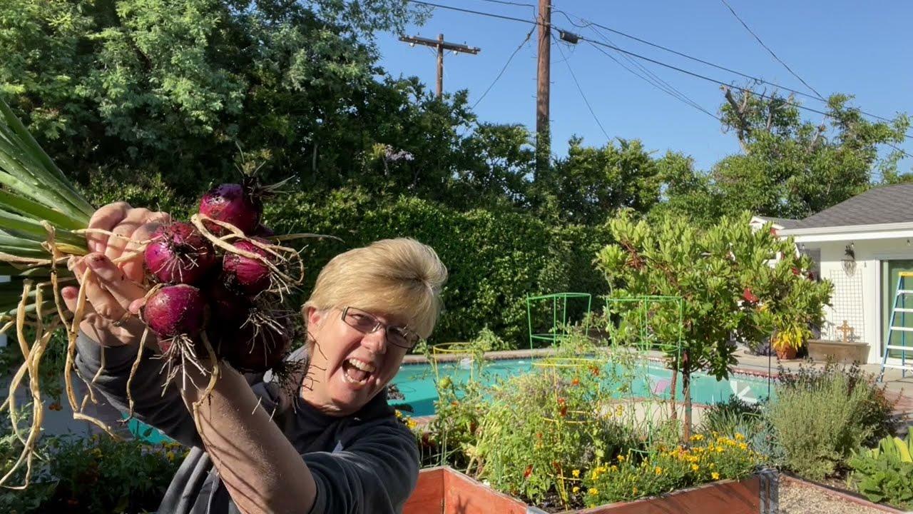 Gardening in 60 Seconds!