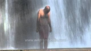 Man bathing in Thiruparappu waterfalls, India