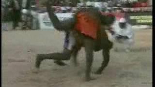 Popular Videos - Dosso