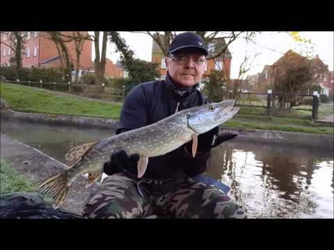 Canal Pike Fishing. Pt2