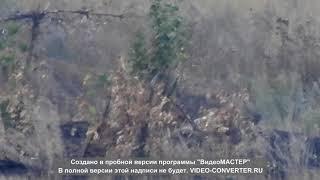Снайпер ДНР против бойца ВСУ 21+ ! Предупреждение: видео содержит реальные съемки боевых действий.