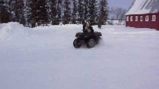 Quad Biking In The Snow With My Cocker Spaniel