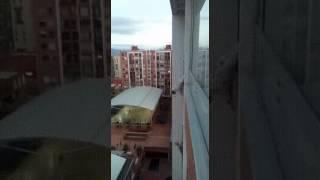 Спас падающую с балкона собаку 😨