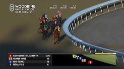 Woodbine: July 31, 2019 - Race 3