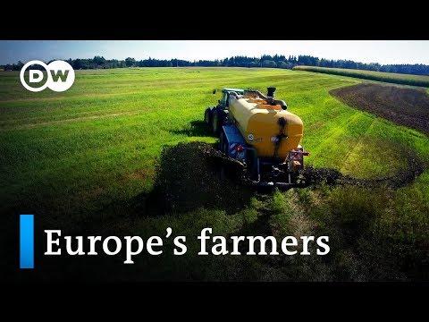 Can farmers grow money? | DW Documentary