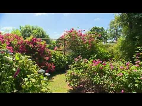 Jardin de Normandie : Le Jardin de Jumaju