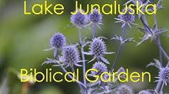 Lake Junaluska Biblical Garden Maggie Valley NC