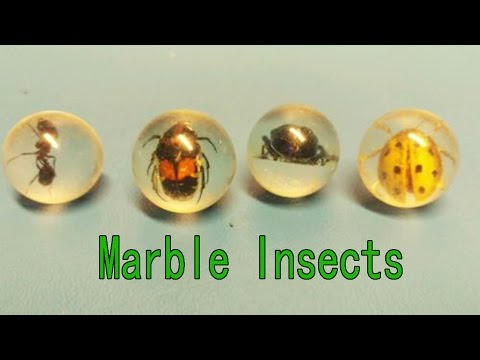 Hand Made Marble Insects | Best From Waste Material | Hand Creativity | Easy Step to Follow