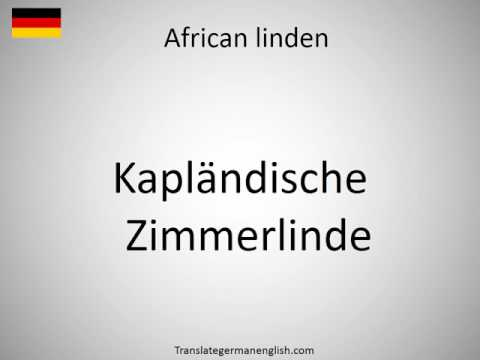 How to say African linden in German?