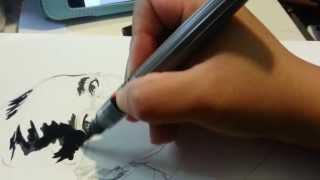 Pentel Color Brush Pen with Pigment Black