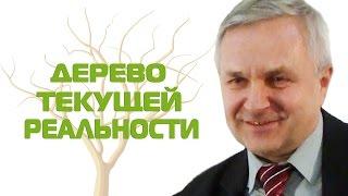 Теория ограничений систем и Дерево Текущей Реальности. Бизнес-урок №5 Сергея Куранова