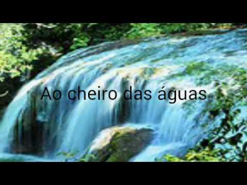 Saudades Melodia Ao Cheiro Das Aguas Beno Cesar Youtube