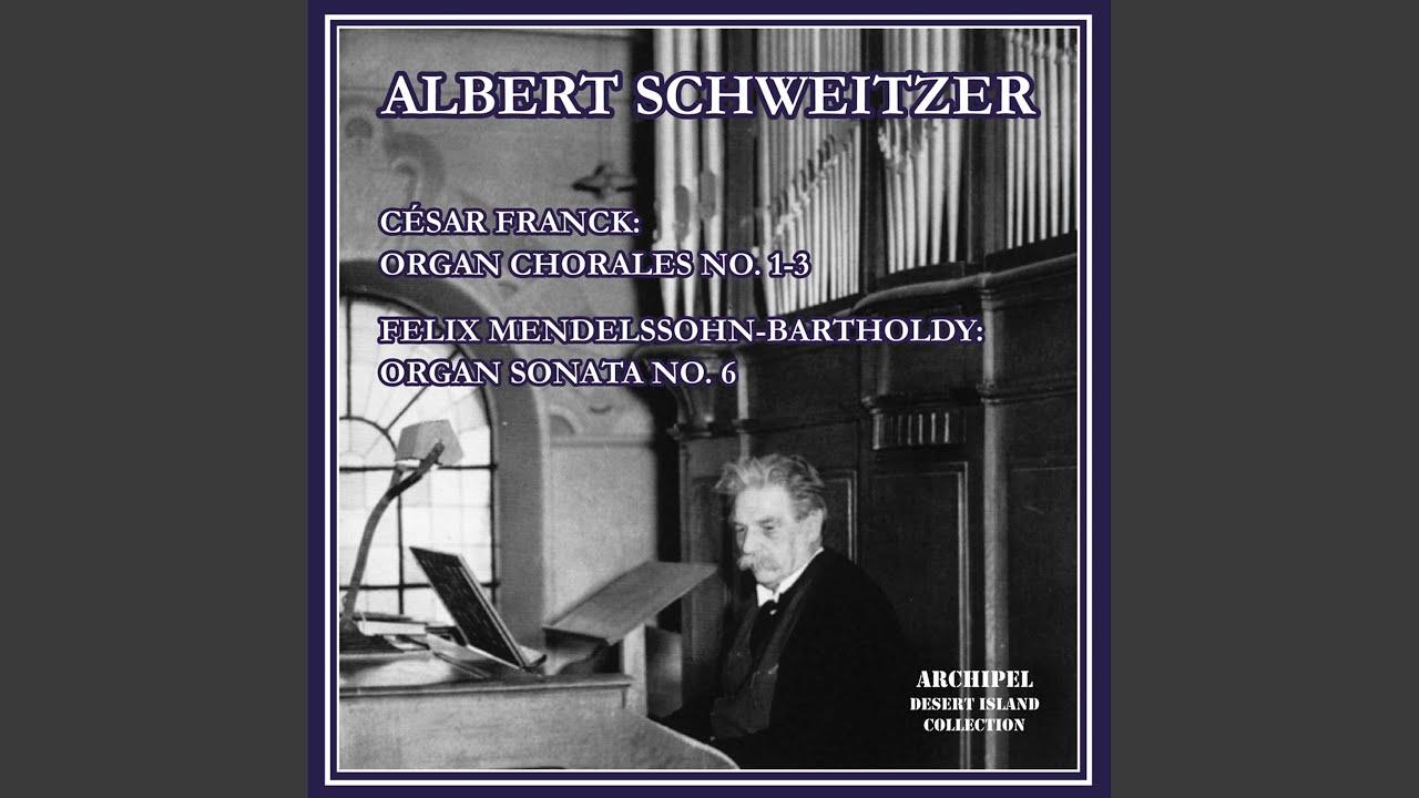 Organ Sonata No. 6 in D Minor, Op. 65 No. 6, MWV W 61: II. Fugue