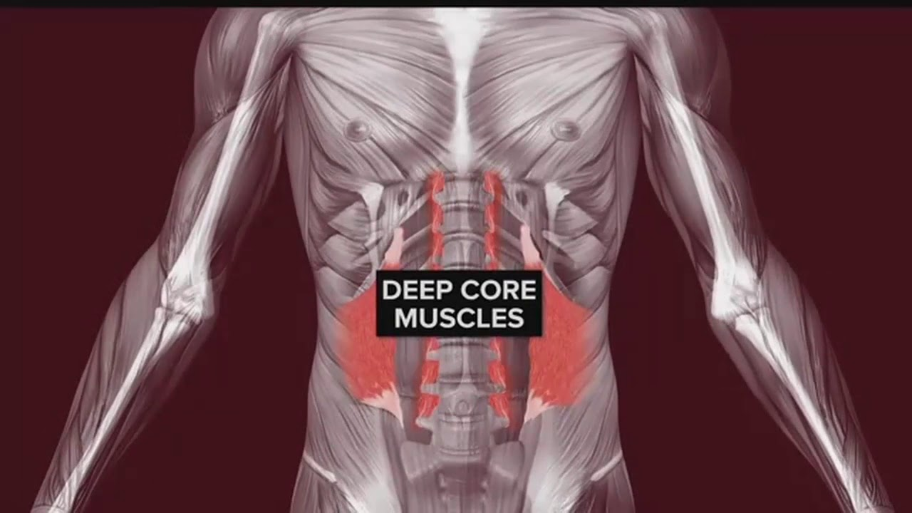 Your Healthy Family: Deep core muscle strength can ease low back ...