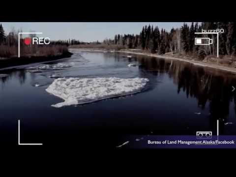 Loch Ness Monster in Alaska?