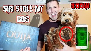 One of Ryan Pownall's most viewed videos: (SIRI STOLE MY DOG!?) 3AM OUIJA BOARD CHALLENGE GONE WRONG!! DONT TALK TO SIRI AT 3AM | (HELP ME!?)