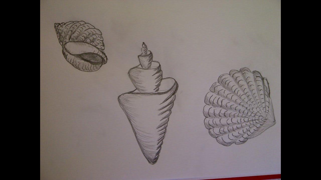 Como dibujar una ostra como hacer un dibujo para - Como hacer dibujos en la pared ...