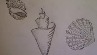 Como dibujar una ostra. Como hacer un dibujo para principiantes. Como desenhar uma ostra
